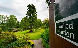 Walled garden at NTS Geilston Garden in Cardross, Argyll and Bute, Scotland, UK
