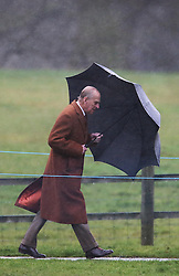 The Duke of Edinburgh braves the elements as he  attends church in the pouring rain at Sandringham, Norfolk, United Kingdom, Sunday, 26th January 2014. Picture by Stephen Lock / i-Images