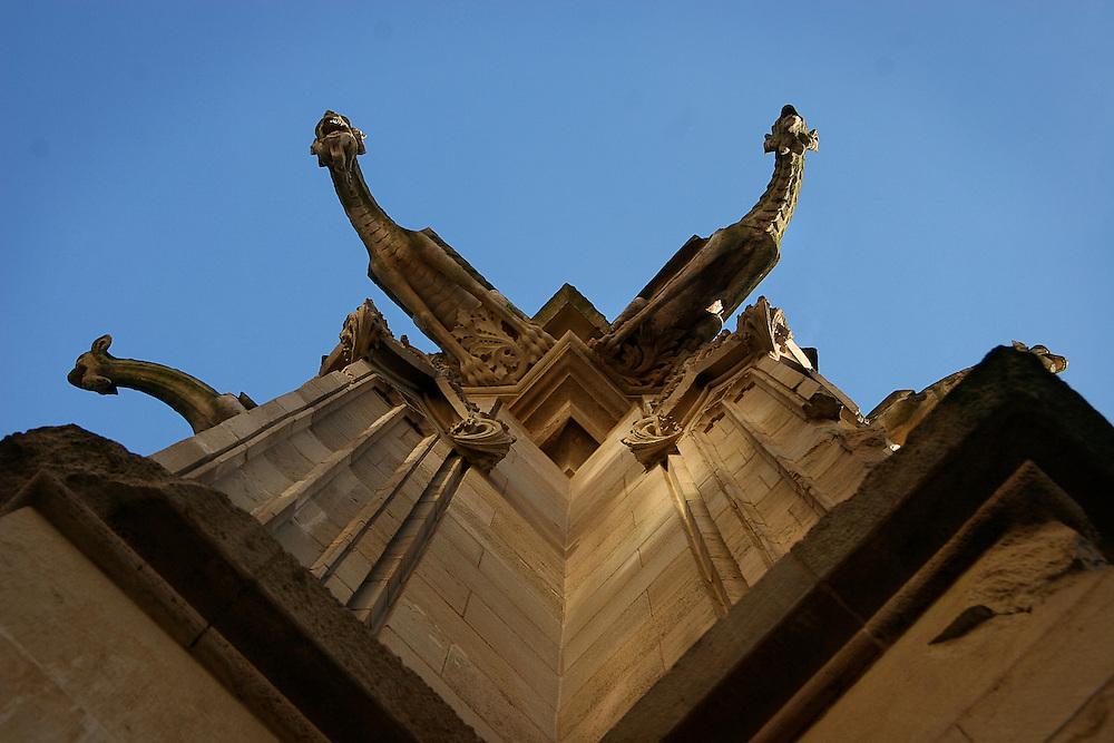 Gargoyles extend their necks on the corner of the Cathédrale Notre Dame de Rouen.