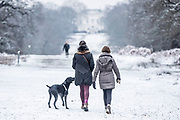 UNITED KINGDOM, London: 23 January 2019 Walkers brave the cold in a frosty Richmond Park in London this morning. Temperatures sunk to below freezing yesterday causing snow flurries across the country. <br /> Rick Findler / Story Picture Agency