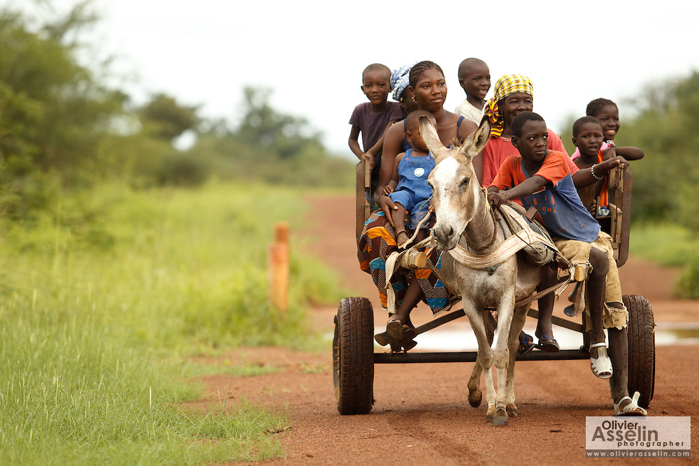 Women and children ride in a donkey cart along the road between Kayes and Kita, Mali on Tuesday August 31, 2010.