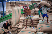 """15 NOVEMBER 2012 - PATHUM THANI, PATHUM THANI, THAILAND: Workers stack bags of rice bought from local farmers by the Thai government in a rice warehouse in Pathum Thani. Each bag weighs 100 kilos. The Thai government under Prime Minister Yingluck Shinawatra has launched an expansive price support """"scheme"""" for rice farmers. The government is buying rice from farmers and warehousing it until world rice prices increase. Rice farmers, the backbone of rural Thailand, like the plan, but exporters do not because they are afraid Thailand is losing its position as the world's #1 rice exporter to Vietnam, which has significantly improved the quality and quantity of its rice. India is also exporting more and more of its rice. The stockpiling of rice is also leading to a shortage of suitable warehouse space. The Prime Minister and her government face a censure debate and possible no confidence vote later this month that could end the scheme or bring down the government.    PHOTO BY JACK KURTZ"""
