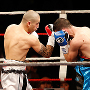Liège - Belgium - January 11, 2014 : Featherweight IBF eliminator between Alex Miskirtchian (Belgium - white shorts) and Sofiane Takoucht (France - blue shorts). Miskirtchian wins by judges decision (117-111, 114-114, 115-113)