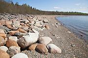 Helleristningsfeltet på Selbustrand kan bare oppleves når Selbusjøen står lavt. Steinene er ikke merket.