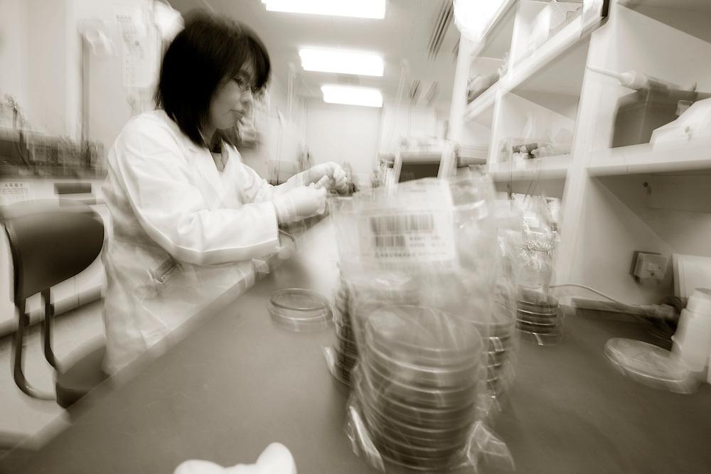 dade berhing .hamamatsu university school of  Medicine Dept.  of  Laboratory Medicine