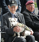Raising the flag for Armed Forces Day <br /> at City Hall, London, Great Britain <br /> <br /> 20th June 2011<br /> <br /> Ron Kane (84 years old)<br /> ex RAF &amp; Army <br /> and his dog Benji<br /> Photograph by Elliott Franks