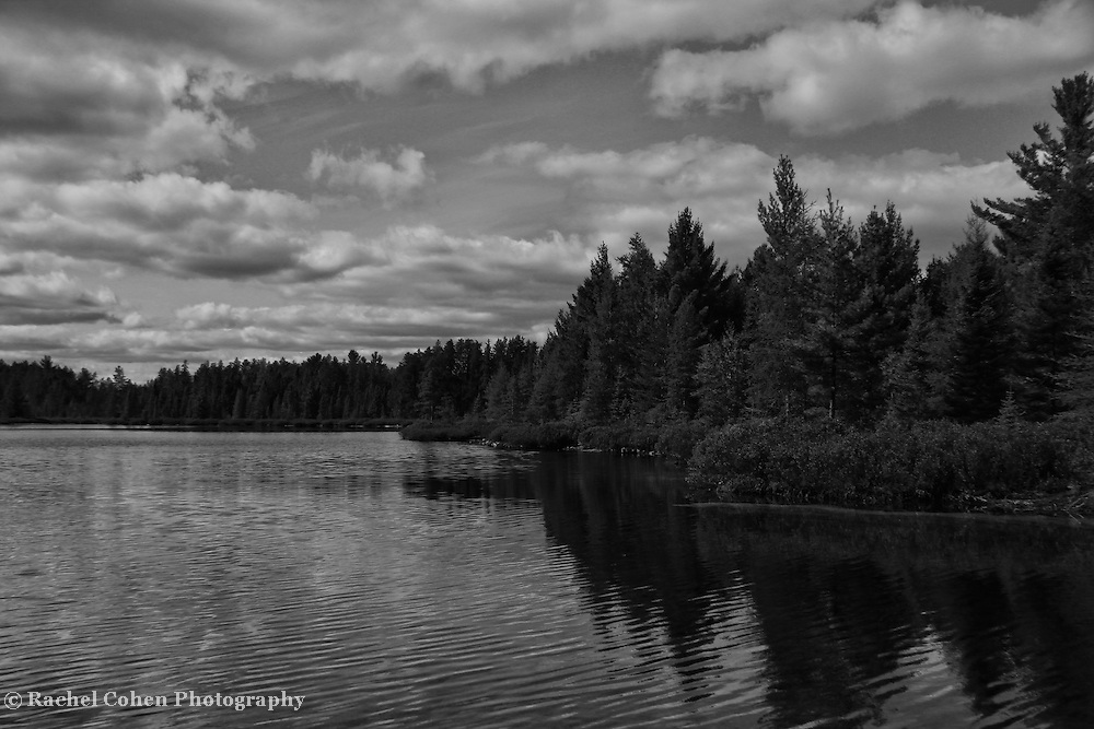 &quot;Peaceful Easy Feeling&quot; B&amp;W<br />