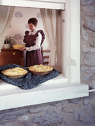 cozy warm  Americana Carefree Casual Charming City life Comfortable Enjoyment Family life Familiar Good Happiness Harmony Home Home ownership Idyllic Improvement Joy Luxury Memories Quality Serene Serenity Solitude Style housewife homemaker farmwife wife places pies on window sill to cool off apron