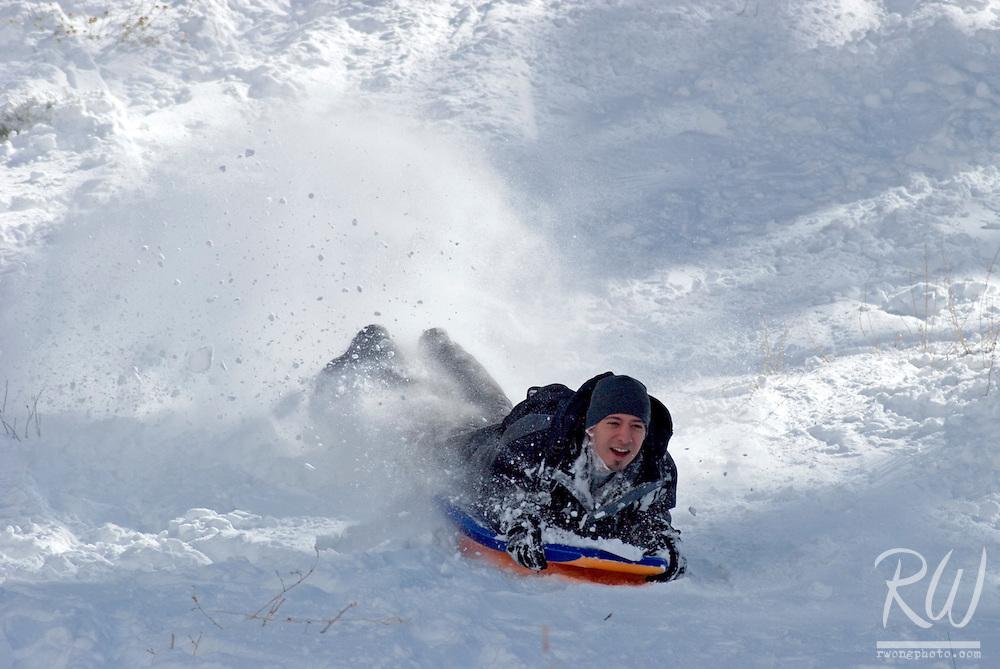 Sledder on Fresh Snow Powder, Mount Baldy, California