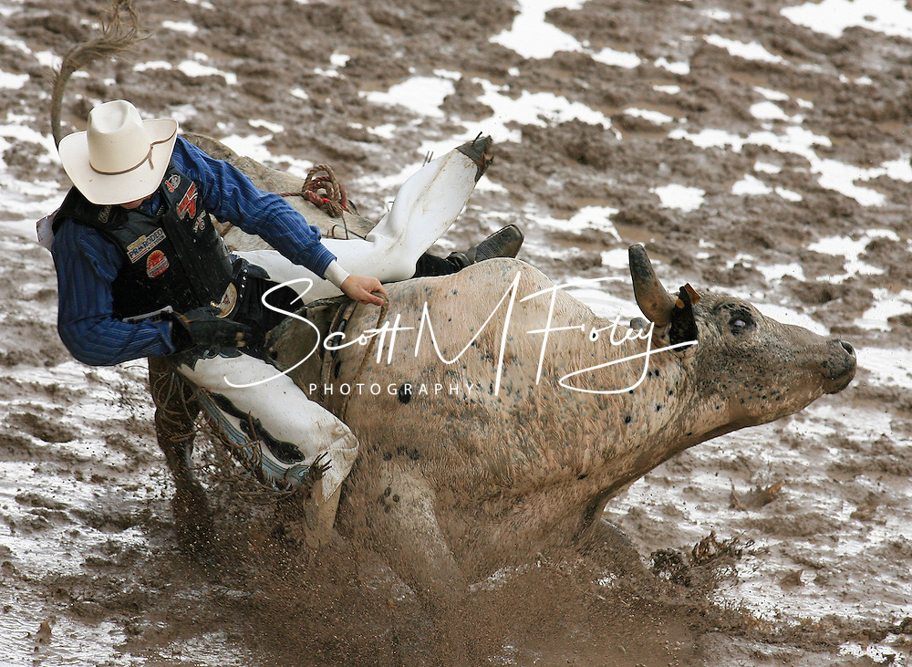 Bull Rider Jay Christopher Morrow tries to hold on while riding 19 Lynda Kistler BK, 28 July 2007, Cheyenne Frontier Days