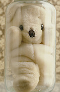 stuffed teddy bear in glass jar