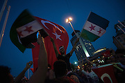 syrians celebrating with Turkish pro government supporters after coup prevented