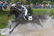 ANNIE CLOVER ridden by Nicola Wilson at Bramham International Horse Trials 2016 at  at Bramham Park, Bramham, United Kingdom on 11 June 2016. Photo by Mark P Doherty.