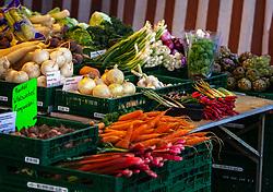 THEMENBILD - frisches und saisonales Obst und Gemüse wird am Wochenmarkt verkauft. Zwiebeln, Lauch, Pfefferoni, Karotten und Rhabarber werden in Kisten auf einem Marktstand angeboten, aufgenommen am 21. April 2018, Salzburg, Österreich // fresh and seasonal fruits and vegetables are sold at the weekly market. Onions, leeks, peppers, carrots and rhubarb are offered in boxes on a market stall at a market stall on 2018/04/21, Salzburg, Austria. EXPA Pictures © 2018, PhotoCredit: EXPA/ Stefanie Oberhauser