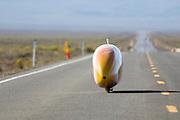 De VeloX3 van het Human Power Team Delft en Amsterdam op de zesde en laatste racedag van de WHPSC. In Battle Mountain (Nevada) wordt ieder jaar de World Human Powered Speed Challenge gehouden. Tijdens deze wedstrijd wordt geprobeerd zo hard mogelijk te fietsen op pure menskracht. Ze halen snelheden tot 133 km/h. De deelnemers bestaan zowel uit teams van universiteiten als uit hobbyisten. Met de gestroomlijnde fietsen willen ze laten zien wat mogelijk is met menskracht. De speciale ligfietsen kunnen gezien worden als de Formule 1 van het fietsen. De kennis die wordt opgedaan wordt ook gebruikt om duurzaam vervoer verder te ontwikkelen.<br /> <br /> The VeloX3 of the Human Power Team Delft and Amsterdam at the sixth and last racing day of the WHPSC. In Battle Mountain (Nevada) each year the World Human Powered Speed Challenge is held. During this race they try to ride on pure manpower as hard as possible. Speeds up to 133 km/h are reached. The participants consist of both teams from universities and from hobbyists. With the sleek bikes they want to show what is possible with human power. The special recumbent bicycles can be seen as the Formula 1 of the bicycle. The knowledge gained is also used to develop sustainable transport.