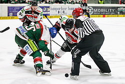 12.12.2014, Curt Fenzel Stadion, Augsburg, GER, DEL, Augsburger Panther vs Koelner Haie, 26. Runde, im Bild l-r: Bully, Greg Moore #26 (Augsburger Panther) und Andreas Falk #71 (Koelner Haie) // during Germans DEL Icehockey League 26th round match between Augsburger Panther vs Koelner Haie at the Curt Fenzel Stadion in Augsburg, Germany on 2014/12/12. EXPA Pictures © 2014, PhotoCredit: EXPA/ Eibner-Pressefoto/ Kolbert<br /> <br /> *****ATTENTION - OUT of GER*****
