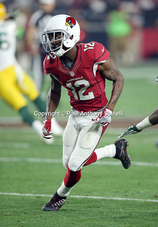 Arizona Cardinals wide receiver John Brown (12) goes out for a pass during the NFL NFC Divisional round playoff football game against the Green Bay Packers on Saturday, Jan. 16, 2016 in Glendale, Ariz. The Cardinals won the game in overtime 26-20. (©Paul Anthony Spinelli)