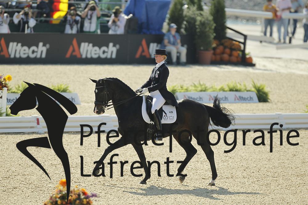 ZU SAYN-WITTGENSTEIN Nathalie, Digby<br /> Kentucky - Alltech FEI WEG 2010<br /> /Stefan Lafrentz