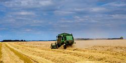 Harvesting wheat in the Somme Valley near Froissy, France<br /> <br /> (c) Andrew Wilson | Edinburgh Elite media