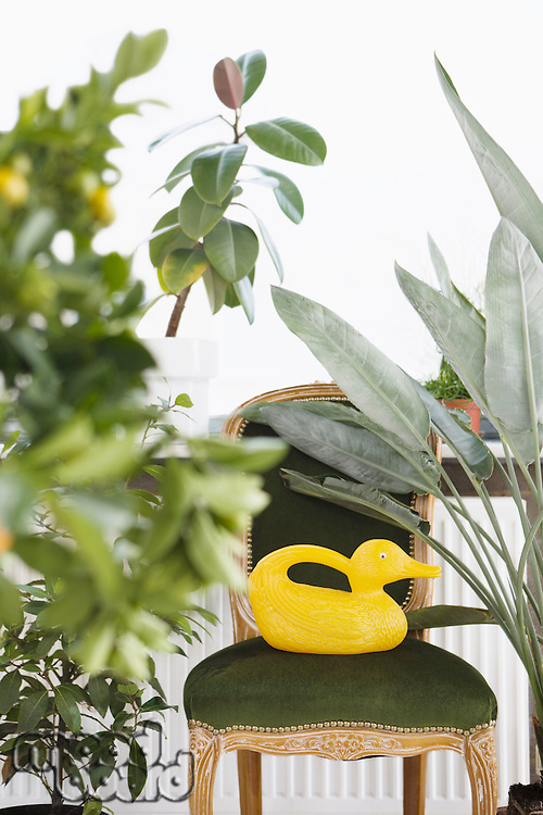 Duck-shaped watering can on velvet chair