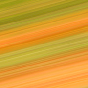 """Streak of Autumn""<br />