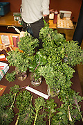 Adaptive Seeds has been breeding kale with input from Chef Timonthy Wastell for desired culinary preference.