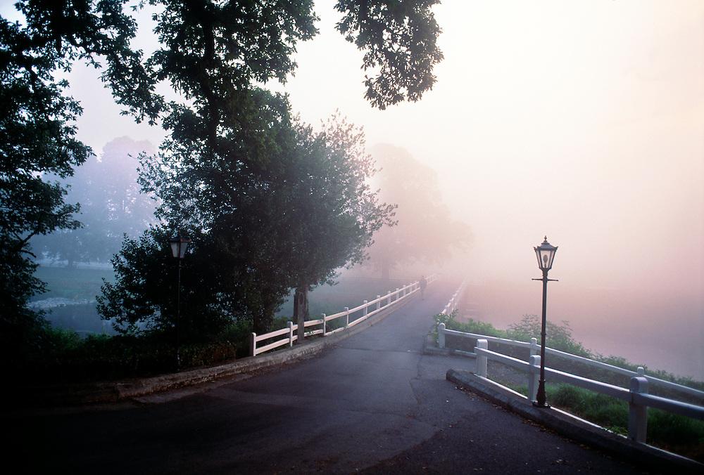 Ireland, County Kilkenny, Mount Juliet, Thomastown, Foggy bridge.