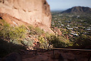 Tilt/shift image on the Echo Canyon trail on Camelback Mountain in Phoenix Arizona.