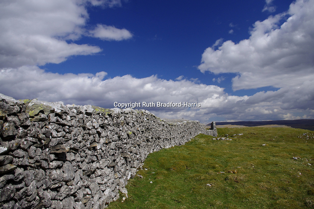 A traditional dry stone wall undulates over the hillside and into the distance above Crummackdale, North Yorkshire. The dramatic cumulonimbus cloudscape and deep blue sky in this wide angle view give the impression of being on top of the world.<br /> <br /> Date taken: 30 April 2013.