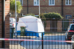 © Licensed to London News Pictures. 15/02/2018. London, UK. A police forensics tent on Goldwing Close, East London, where a 17-year-old boy was fatally stabbed. Police and London Ambulance Service attended but the victim was pronounced dead at the scene. A murder investigation has been launched. Photo credit: Rob Pinney/LNP