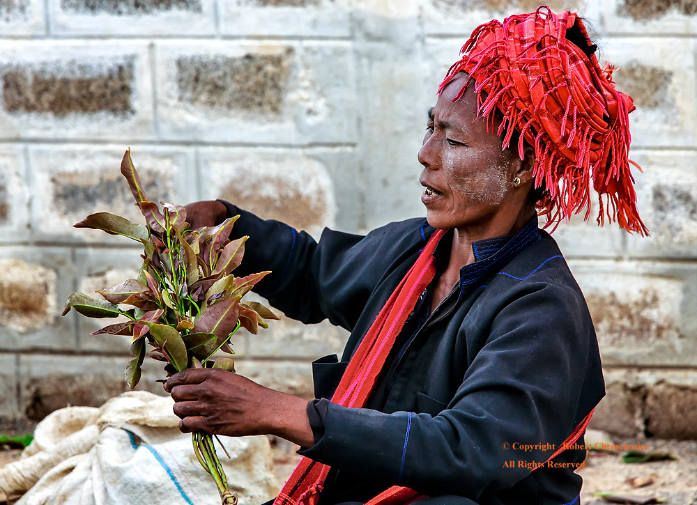 Kalaw Market: A lovely woman in tribal red head-dress gathers a handful of plants sold at her curb side stall in Kalaw Myanmar.