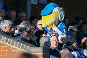 Haydon the Womble in the stands and with the crowd to wish a AFC Wimbledon fan a happy birthday during the EFL Sky Bet League 1 match between AFC Wimbledon and Fleetwood Town at the Cherry Red Records Stadium, Kingston, England on 8 February 2020.