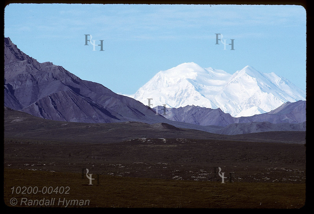 Snowy Mt McKinley towers behind Double, Cathedral and Sable Mountains on August morn; Denali National Park, Alaska