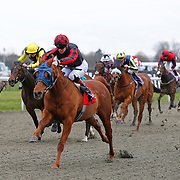 Foxhaven and Thomas Brown winning the 4.50 race