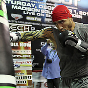 Miguel Cotto Boxing