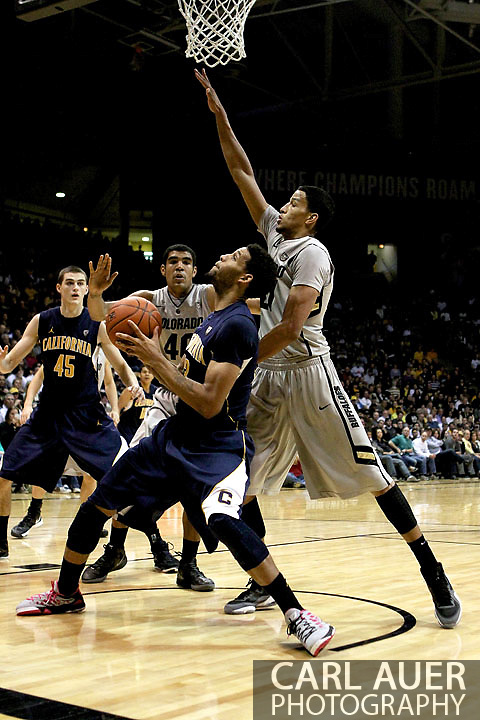 January 27th, 2013 Boulder, CO - California Golden Bears freshman guard Tyrone Wallace (3) tries to draw a foul from Colorado Buffaloes junior forward André Roberson (21) during the NCAA basketball game between the California Golden Bears and the University of Colorado Buffaloes at the Coors Events Center in Boulder CO