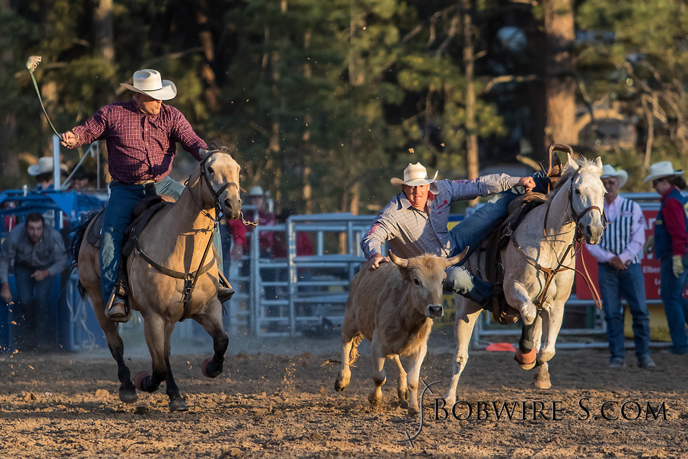 Steer wrestler Shawn Mills makes his run during the second performance of the Elizabeth Stampede on Saturday, June 2, 2018.
