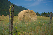 Freshly baled hay sits drying in a field near the Montana Idaho state line. Clarkfork, Idaho. . PLEASE CONTACT US FOR DIGITAL DOWNLOAD AND PRICING.