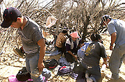 A group of illegal immigrants, who crossed from Mexico on to the Tohono O'odham Nation, seeks shade under the scrub trees of the Sonoran Desert in temperatures exceeding 100 degrees south of Sells, Arizona, USA.