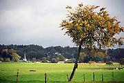Belgie, Arlon, 20-10-2010Landschap in de omgeving van deze stad in de Belgische Ardennen.Foto: Flip Franssen/Hollandse Hoogte