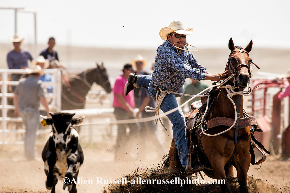 Rocky Boy Rodeo-Indian cowboys-Tie Down Roping-calf roping-Rocky Boy Reservation-Montana-Roy Begay