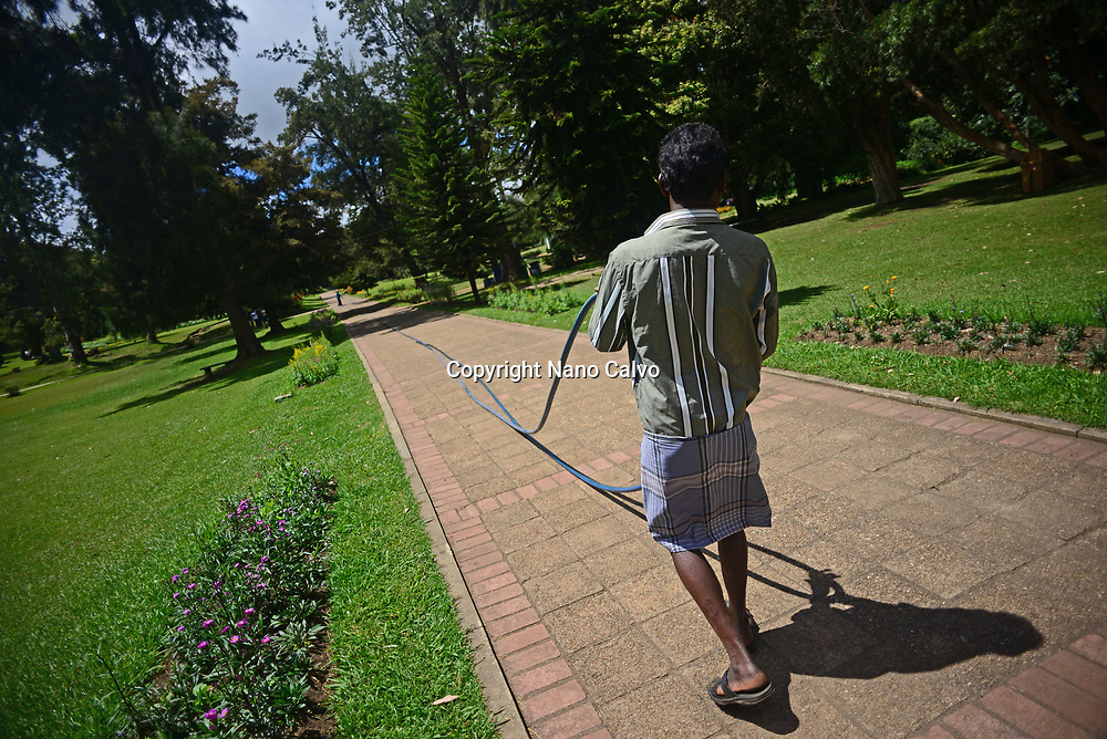 Man woking at Victoria Park, public park located in Nuwara Eliya, Sri Lanka
