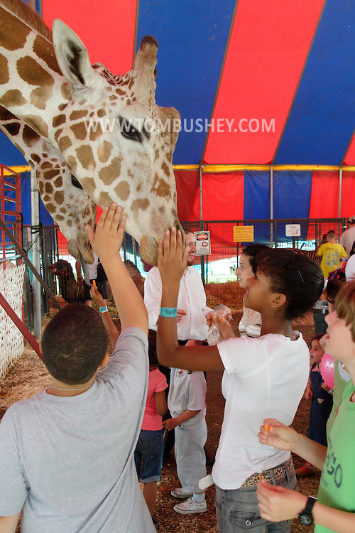Mechanicstown, NY - Young people pet a giraffe in a tent at the Orange County Fair on July 29, 2007..