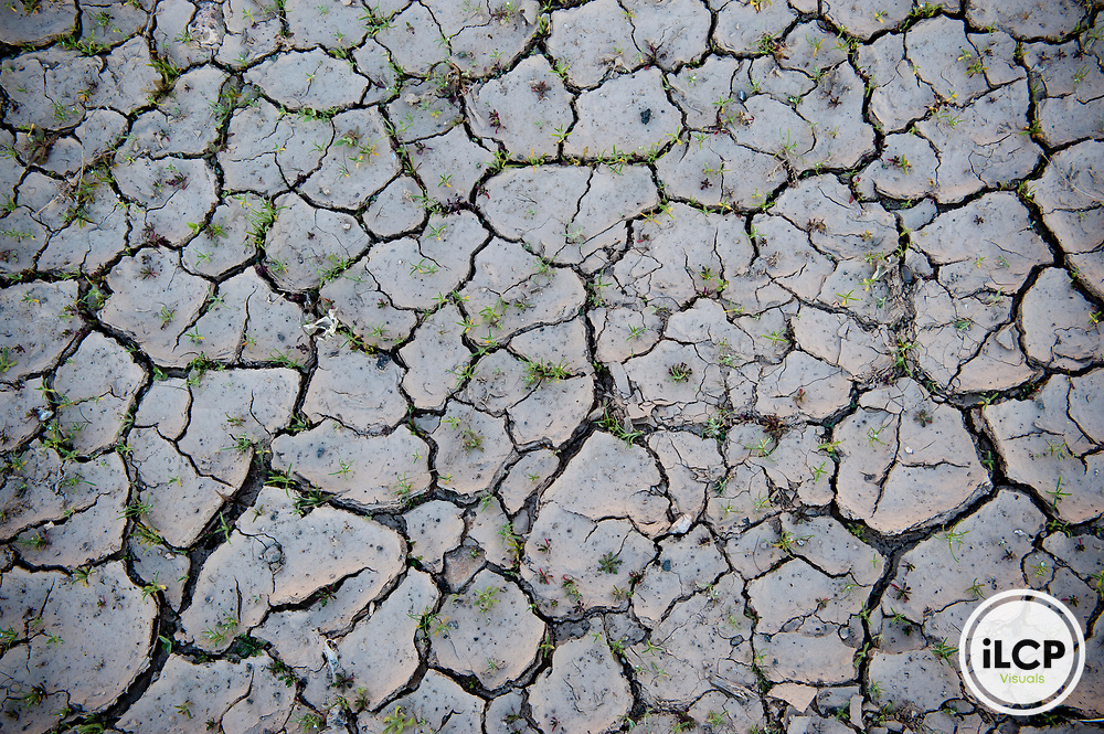 Dried, cracked earth.