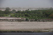 A sandstorm is being created by strong winds over the heavily polluted and dry Yamuna River next to the Taj Mahal, in Agra.