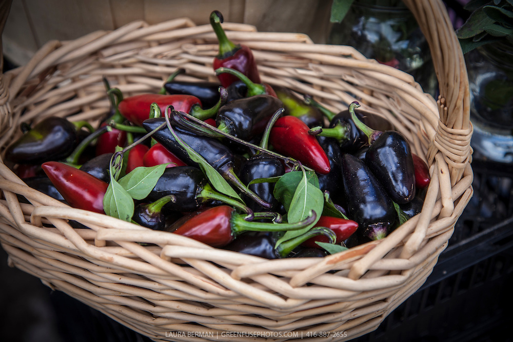 Red and black Jalapeño peppers in a basket at a farmers market.