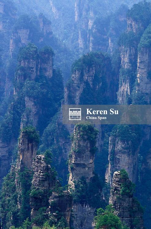 Rock pillars rising from subtropical forest (Peak King's Brush), Mt. Tianzi, Zhangjiajie, Wulingyuan Scenic Area, Hunan Province, China