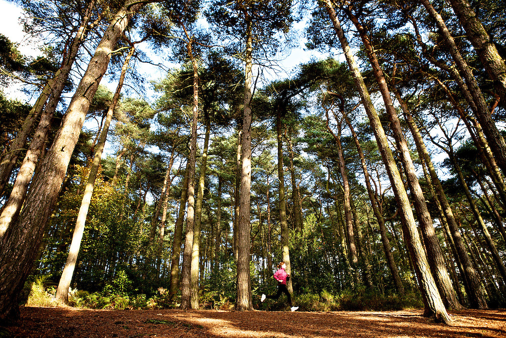 Sian Hill at Lickey Hills, Birmingham. Lifestyle Photo shoot