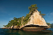 Karst cliff of a bird nesting island, Triton Bay, Papua