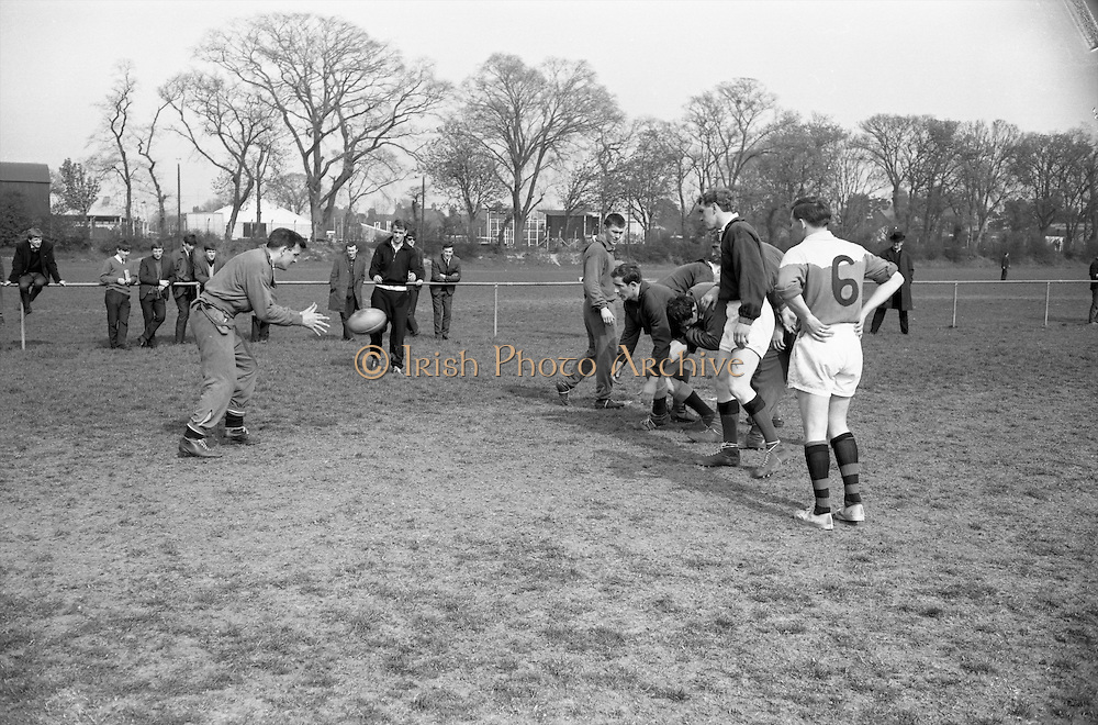 The ball comes back to N Murphy, Captain, from Hutton,.Niall Brophy is in the centre, also included are Kennedy and Molloy,..Irish Rugby Football Union, Ireland v France, Five Nations, Irish team practice, Anglesea Road Dublin, Ireland, Friday 14th April, 1967,.14.4.1967, 4.14.1967,..Referee- R P Burrell, Scottish Rugby Union, ..Score- Ireland 6- 11 France, ..Irish Team, ..T J Kiernan,  Wearing number 15 Irish jersey, Full Back, Cork Constitution Rugby Football Club, Cork, Ireland,..R D Scott, Wearing number 14 Irish jersey, Right Wing, Queens University Rugby Football Club, Belfast, Northern Ireland, ..F P K Bresnihan, Wearing number 13 Irish jersey, Right Centre, University College Dublin Rugby Football Club, Dublin, Ireland, ..J C Walsh,  Wearing number 12 Irish jersey, Left Centre, Sundays Well Rugby Football Club, Cork, Ireland, ..N H Brophy, Wearing number 11 Irish jersey, Left wing, Blackrock College Rugby Football Club, Dublin, Ireland, ..C M H Gibson, Wearing number 10 Irish jersey, Stand Off, N.I.F.C, Rugby Football Club, Belfast, Northern Ireland, ..R M Young, Wearing number 9 Irish jersey, Scrum Half, Queens University Rugby Football Club, Belfast, Northern Ireland,..K G Goodall, Wearing number 8 Irish jersey, Forward, Newcastle University Rugby Football Club, Newcastle, England, ..M G Doyle, Wearing number 7 Irish jersey, Forward, Edinburgh Wanderers Rugby Football Club, Edinburgh, Scotland, ..N A Murphy, Wearing number 6 Irish jersey, Captain of the Irish team, Forward, Cork Constitution Rugby Football Club, Cork, Ireland,..M G Molloy, Wearing number 5 Irish jersey, Forward, University College Galway Rugby Football Club, Galway, Ireland,  ..W J McBride, Wearing number 4 Irish jersey, Forward, Ballymena Rugby Football Club, Antrim, Northern Ireland,..S A Hutton, Wearing number 3 Irish jersey, Forward, Malone Rugby Football Club, Belfast, Northern Ireland, ..K W Kennedy, Wearing number 2 Irish jersey, Forward, C I Y M S Rugby Football Club, Belfast, Nort